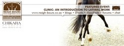Clinic: Introduction to Lateral Work @ Chikara
