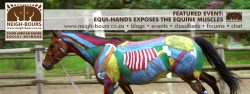 Equi-Hands Exposes the Equine Muscles @ Chikara Stables