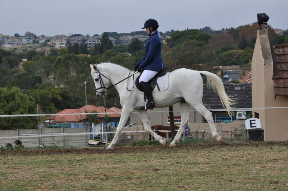 Results: Hope Riding Training Show